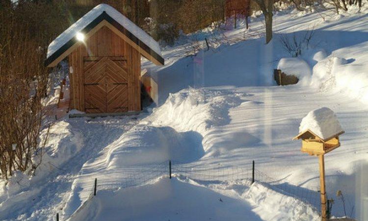 Réalisation d'un abri de jardin de 12m² en ossature bois et Bardage Mélèze des Hautes Alpes à St Bernard du Touvet (Isère - 38)